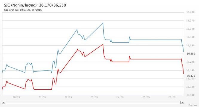 Giá vàng hôm nay (26/9): SJC rơi sâu ảnh 2