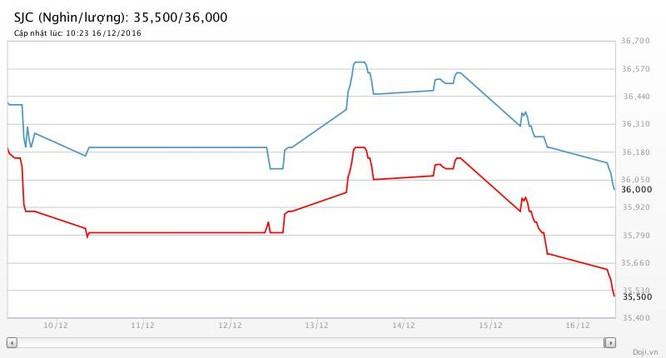 Giá vàng SJC và tỷ giá USD/VND: Chia nửa buồn vui! ảnh 2