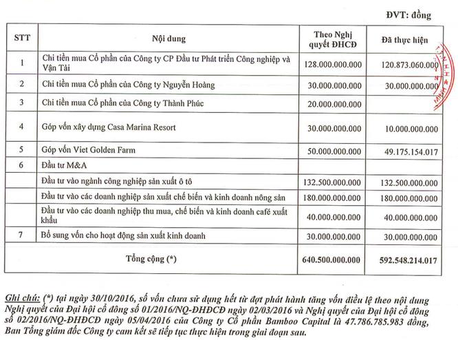 Bamboo Capital: Vừa tiêu hết gần 600 tỷ đồng tăng vốn, đã lại muốn tăng ảnh 1