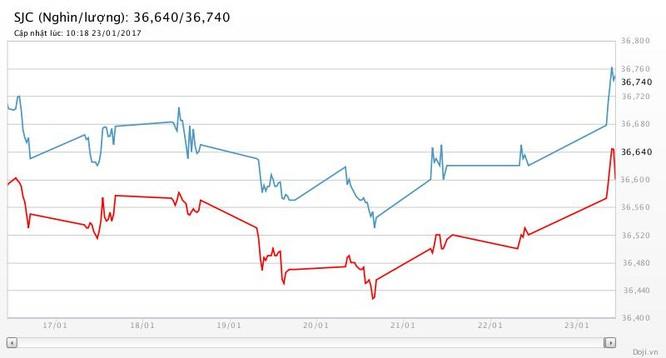 Giá vàng tăng mạnh tuần giáp Tết ảnh 2