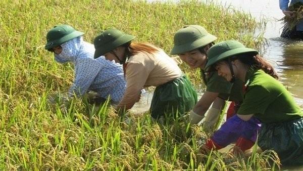 """""""Khát vọng Việt Nam"""" và """"tụt hậu không còn là nguy cơ"""""""