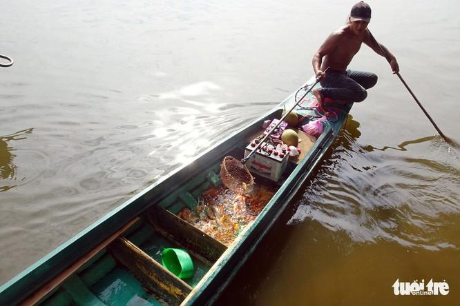 Cá cúng ông Táo vừa thả đã bị xuyệt điện ngắc ngoải - Ảnh 2.