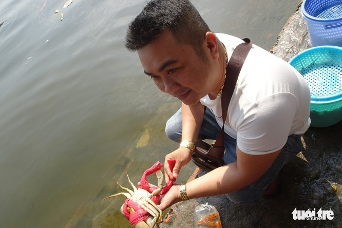 Cá cúng ông Táo vừa thả đã bị xuyệt điện ngắc ngoải - Ảnh 5.