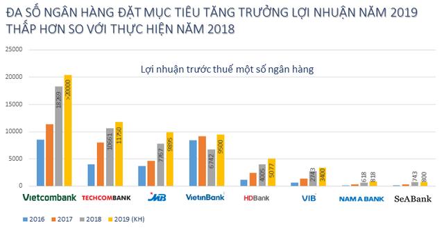 Các ngân hàng bất ngờ rụt rè với mục tiêu lợi nhuận năm 2019 - Ảnh 1.