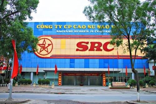 """Các ông chủ dự án ở """"đất vàng"""" 231 Nguyễn Trãi ảnh 1"""