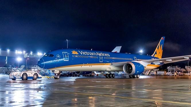 Hành khách khiến chuyến bay VN31 phải delay 33 phút là ai? ảnh 2