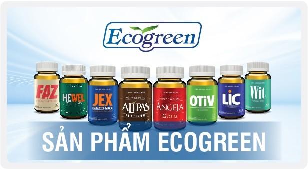 Eco Pharma - nhà phân phối độc quyền sâm Alipas Platinum, sâm Angela Gold: Doanh thu nghìn tỷ, lợi nhuận mỏng tang... ảnh 2
