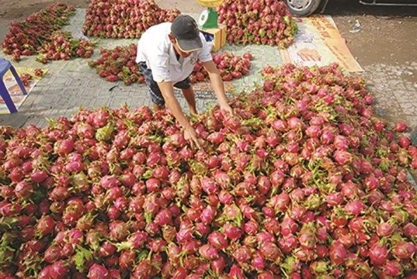 Áp lực lớn cho chính sách tiền tệ Việt Nam trong mùa dịch ảnh 2
