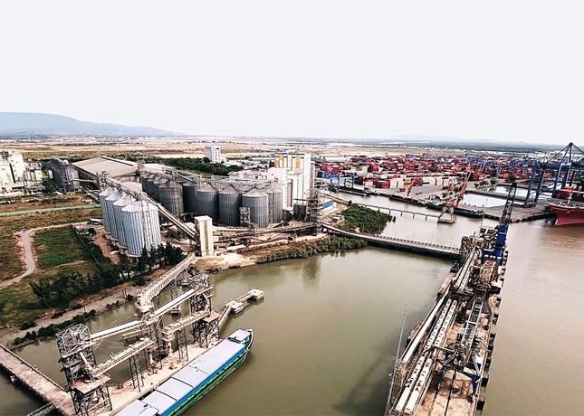 CEO Tân Long: Từ nhà buôn đi gầy dựng thương hiệu nông sản Việt ảnh 3
