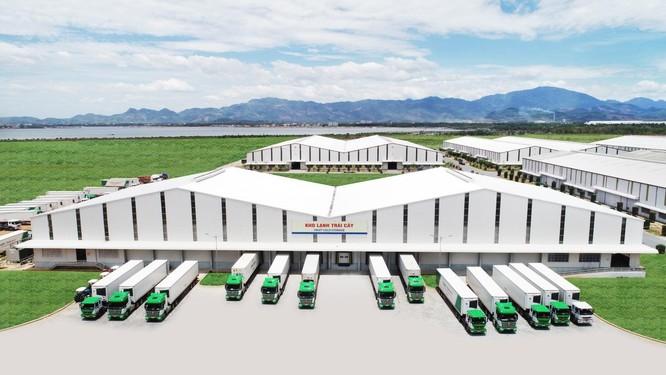 Logistics trọn gói cho nông nghiệp - THILOGI góp phần mang nông sản Việt ra thế giới ảnh 3
