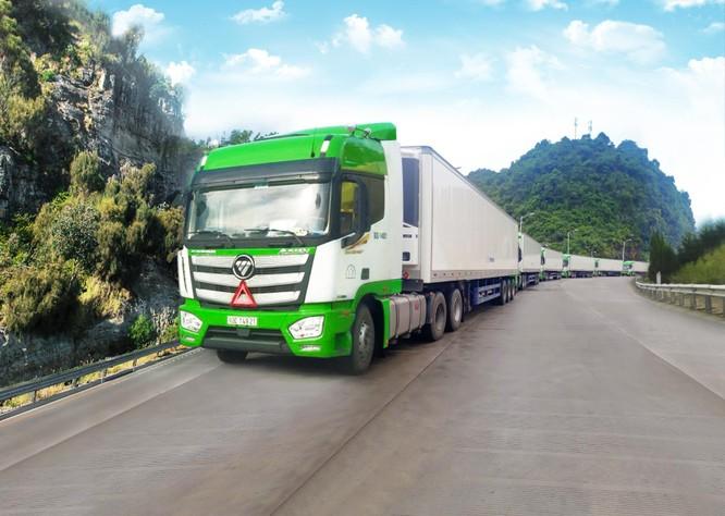 Logistics trọn gói cho nông nghiệp - THILOGI góp phần mang nông sản Việt ra thế giới ảnh 4