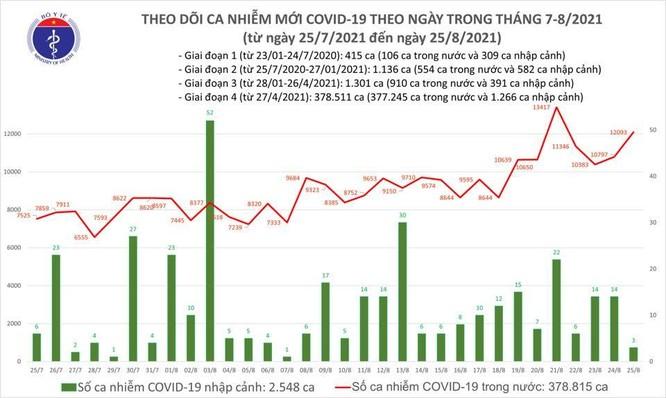 Tin Covid-19 ngày 25/8: Cả nước có 12.096 ca nhiễm mới, cao thứ 2 kể từ đầu dịch ảnh 1