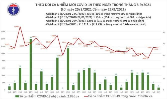 Tin COVID-19 ngày 22/9: Cả nước ghi nhận 11.527 ca nhiễm mới tại 35 tỉnh thành ảnh 1