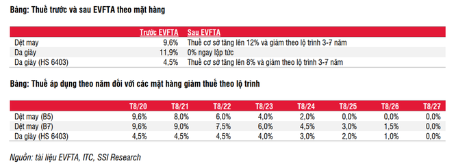 Nhóm ngành nào sẽ hưởng lợi dài hạn từ EVFTA? ảnh 2