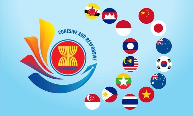 Hiệp định RCEP ý nghĩa gì với Việt Nam ảnh 2
