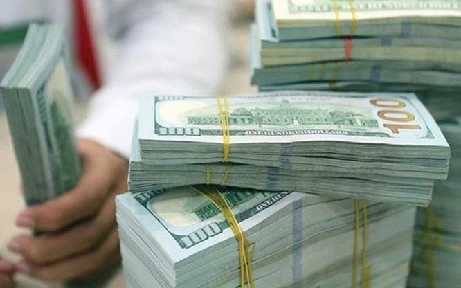 Hàm ý gì đằng sau việc điều chỉnh phương án mua ngoại tệ của Ngân hàng Nhà nước? ảnh 1