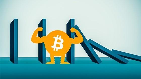 Bitcoin: Vàng số hay tulip? ảnh 2