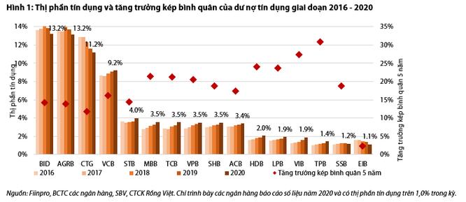 Cận cảnh thị phần tín dụng của các ngân hàng Việt ảnh 1