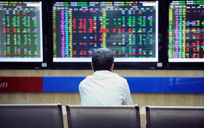 Đầu tư cổ phiếu Midcaps hay Bluechips? ảnh 1