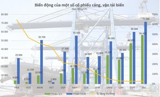 Cổ phiếu vận tải biển về đâu sau đà tăng nóng? ảnh 1