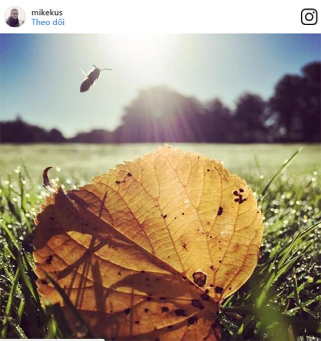 """Mẹo chụp ảnh """"chất phát ngất"""" trên Instagram ( Phần 1) ảnh 8"""