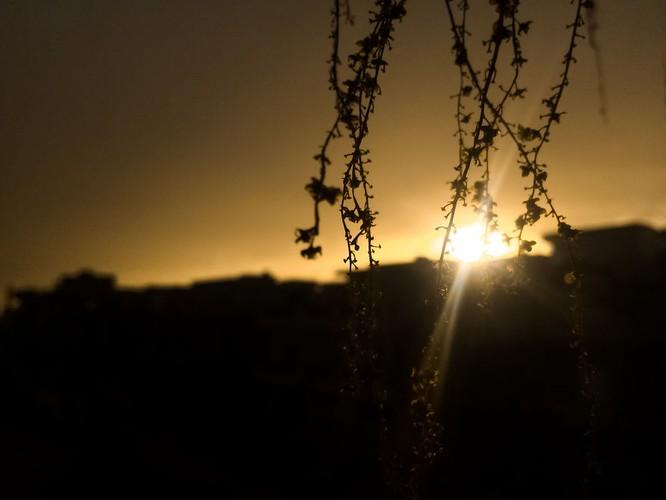 Những shot hình tuyệt đẹp được chụp bằng iPhone 5s ảnh 12