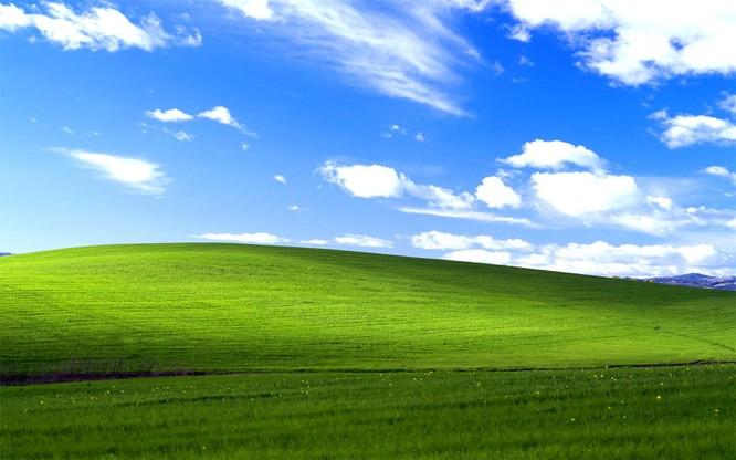 """Cha đẻ của hình nền """"tỉ view"""" Windows XP tái xuất ảnh 2"""
