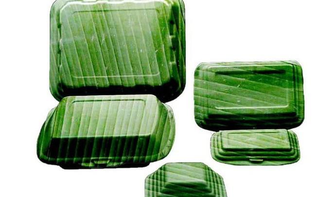 Khởi nghiệp thành công với hộp ép từ lá chuối, xanh sạch, vì môi trường ảnh 2