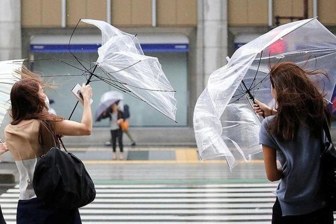 Dịch vụ chia sẻ dù nở rộ tại Nhật, nơi tiêu thụ 120 triệu ô/năm ảnh 1