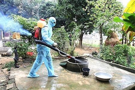Những vật dụng trong nhà thân thuộc nhưng chứa bọ gậy gây sốt xuất huyết ảnh 2