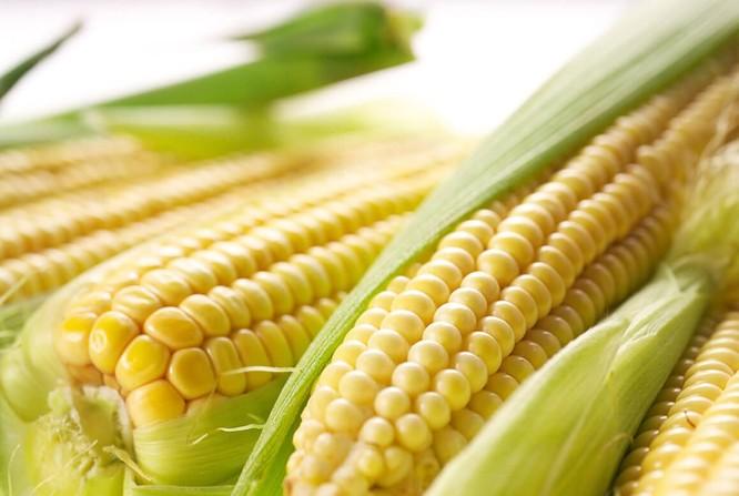 Top 5 loại thực phẩm giúp cải thiện lá gan nhiễm mỡ ảnh 1
