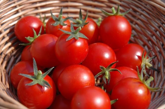 Top 5 loại thực phẩm giúp cải thiện lá gan nhiễm mỡ ảnh 4