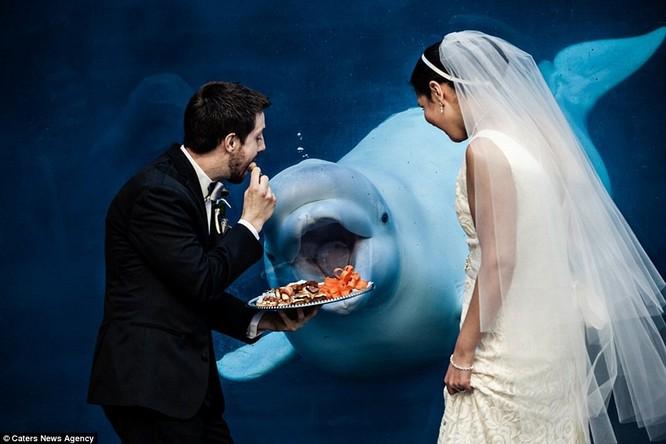 Hàng nghìn tác phẩm dự thi ghi lại những khoảnh khắc khó quên trong ngày vui của các cặp vợ chồng được gửi đến.