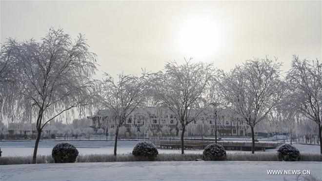 Băng tuyết phủ trắng các danh thắng ở Trung Quốc ảnh 7