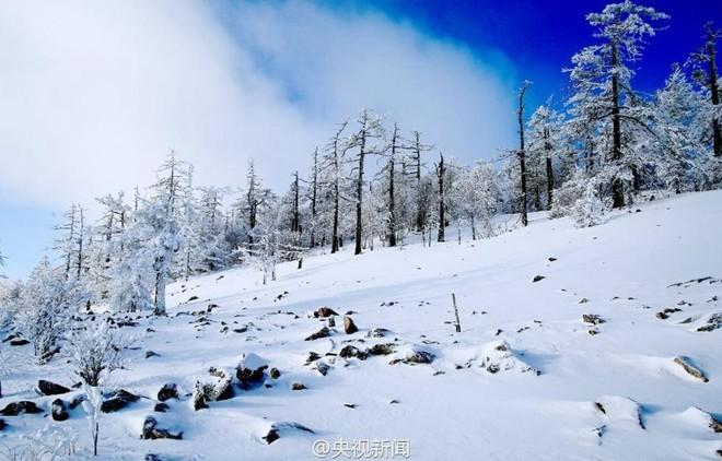 Băng tuyết phủ trắng các danh thắng ở Trung Quốc ảnh 13