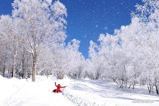 Băng tuyết phủ trắng các danh thắng ở Trung Quốc ảnh 2