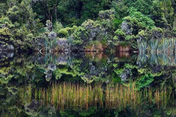 Ảnh đẹp: Thiên nhiên kỳ vĩ của New Zealand ảnh 1