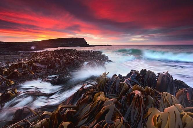 Ảnh đẹp: Thiên nhiên kỳ vĩ của New Zealand ảnh 4