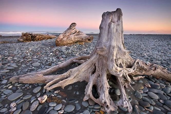 Ảnh đẹp: Thiên nhiên kỳ vĩ của New Zealand ảnh 6