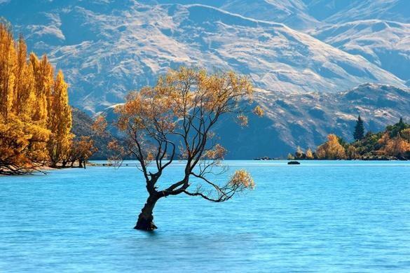 Ảnh đẹp: Thiên nhiên kỳ vĩ của New Zealand ảnh 13