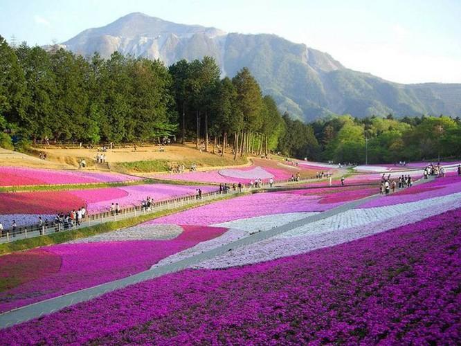 Top 10 địa danh đẹp nhất trên thế giới ảnh 5
