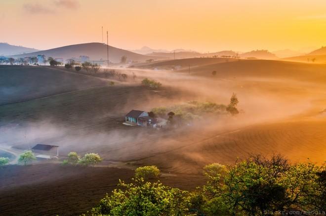 Top 15 địa điểm du lịch hot nhất Tết Bính Thân ảnh 7