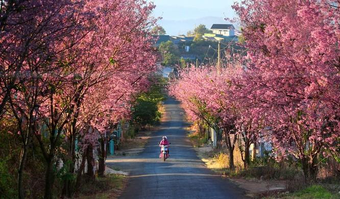Top 15 địa điểm du lịch hot nhất Tết Bính Thân ảnh 38