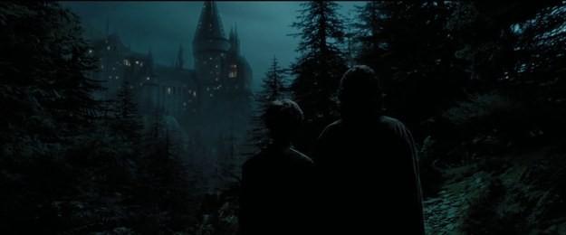 Tái hiện bộ truyện Harry Potter qua 100 khoảnh khắc đẹp nhất ảnh 29