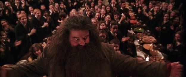 Tái hiện bộ truyện Harry Potter qua 100 khoảnh khắc đẹp nhất ảnh 19