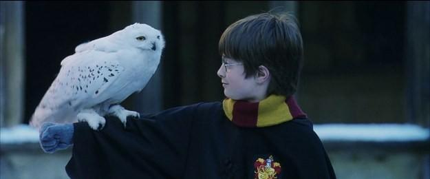 Tái hiện bộ truyện Harry Potter qua 100 khoảnh khắc đẹp nhất ảnh 7