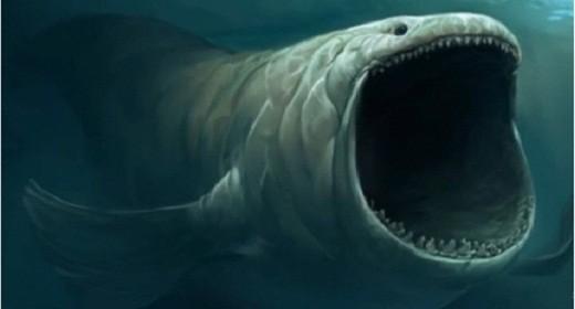 """Kỳ thú """"quái vật"""" dưới lòng đại dương ảnh 4"""
