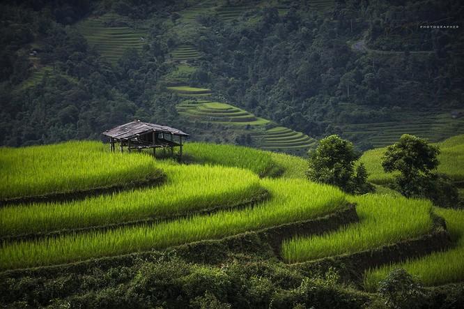 Việt Nam tuyệt đẹp trên Photography Life ảnh 3