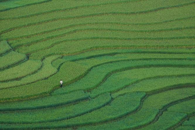 Việt Nam tuyệt đẹp trên Photography Life ảnh 11