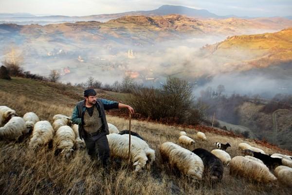 Việt Nam giành giải thưởng nhiếp ảnh du lịch ấn tượng ảnh 17